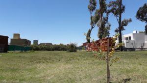 Santina Norte - Mejor zona - Lote 600 m2